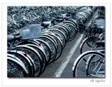 I want to ride my bicycle-STF.jpgby Adi