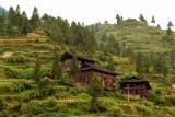 miao village.jpg
