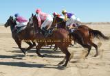 Birdsville starting barriers racing