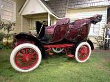 1904 Cadillac Tulip