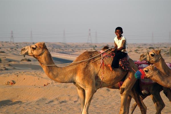 Sharjah Camel Racetrack