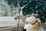 Coming Over the Transom