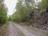 CATA-trail2.jpg