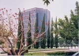Irvine_5.jpg