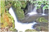 Bush Waterfall