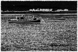 Boats on Tauranga Harbour