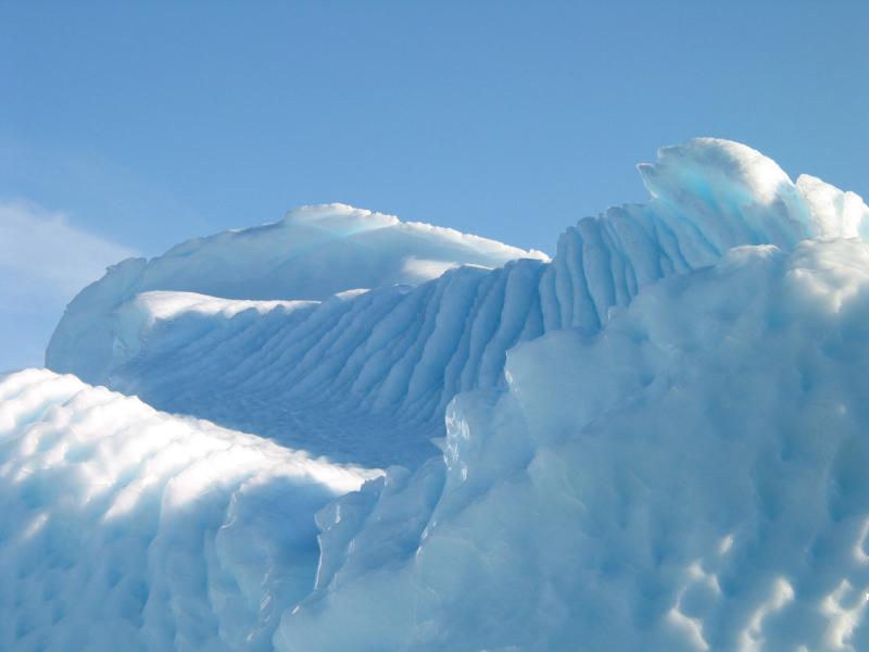 Textured Curves on Iceberg