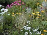Al's Garden - Pembroke