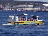 Seymour Splash In Halifax Harbor