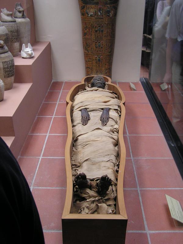 Mummy (died 3 millenia ago)