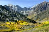 Eastern Sierra's Foliage  16, 17 and 18th of Oct 03