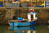 Homeland at Crail Harbour.