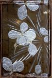 : White Flowers :