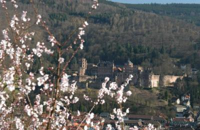 Castle from the Philosophers Way (Philosophenweg)