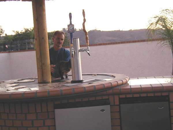 The beer taps on the top of the table will be supplied by the beer kegs in the fridge under the table.