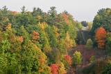 Autumn Colours 2004
