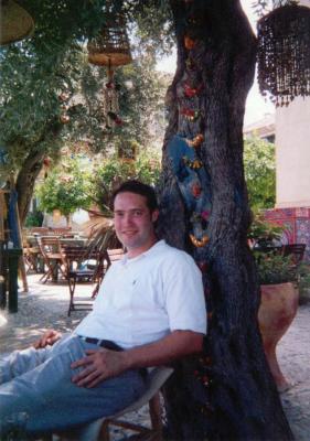 Olive Tree, Haifa