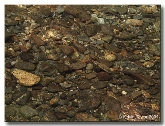 Pebbles in a mountain stream in NC