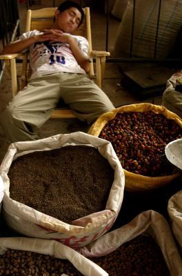 Herbal Market, Xian, China, 2004