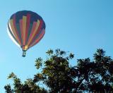 backyard-balloon.jpg