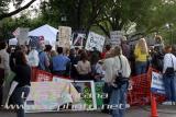 Terri Schiavo Protestors