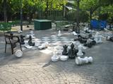 In the park of Geneva College