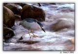 Fishing in turmoil ...