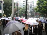 Jour de pluie, si vous n'avez pas votre parapluie c'est que vous n'êtes pas Tokyoist