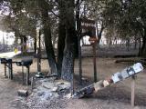 Whispering Pines - Near Julian, CA