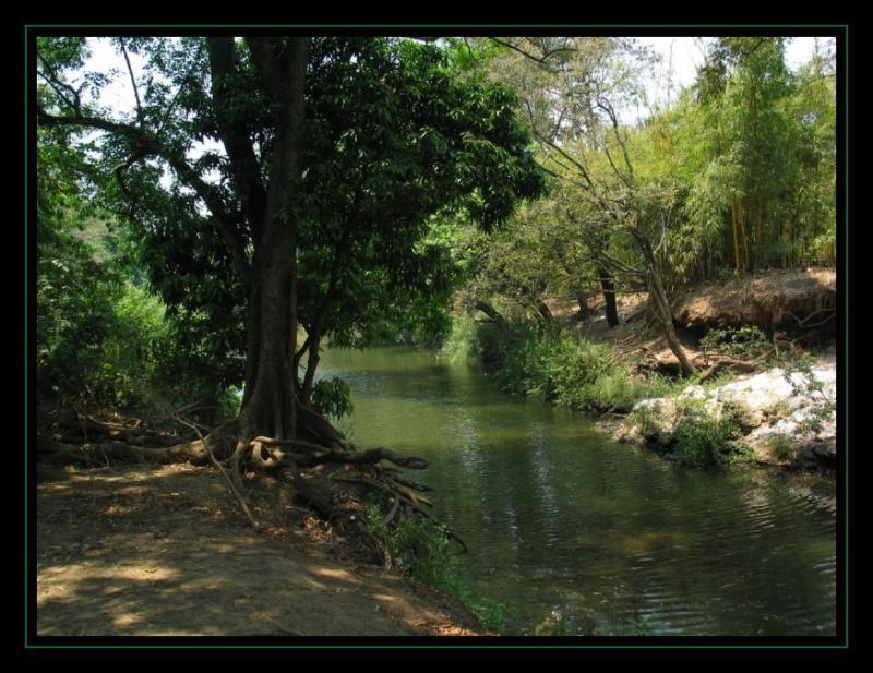 Lilongwe Nature reserve