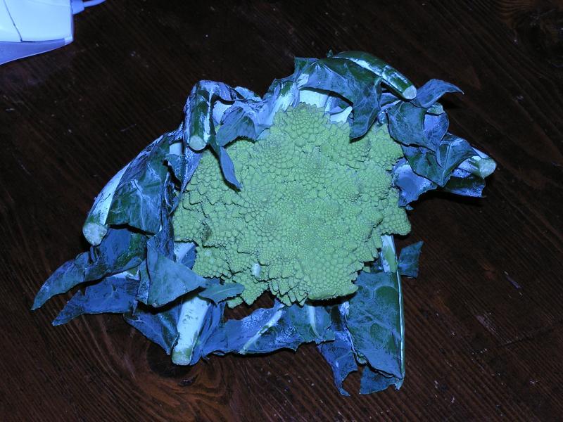 Mysterious broccoli/cauliflower mix