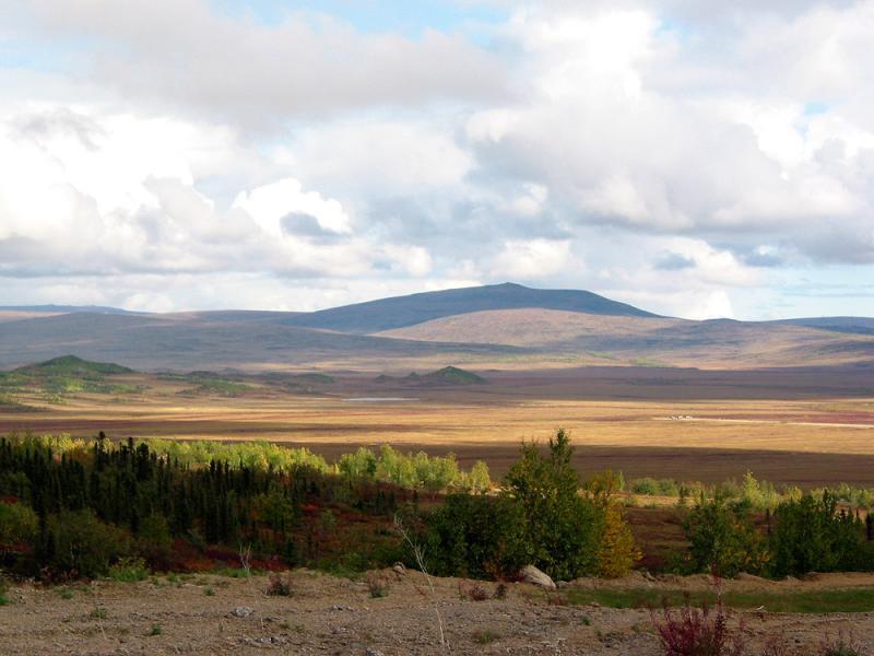 Arctic autumn scenery