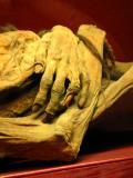 museo de las momias (warning)
