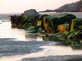 toby's beach