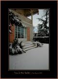 Snow In Our Garden
