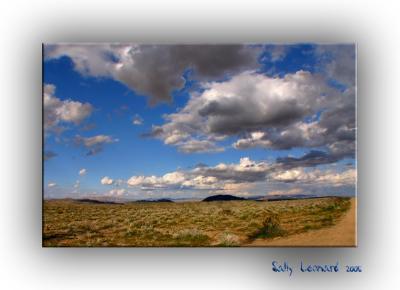Mojave Desert Sky