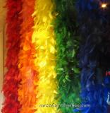 Pride Feathers