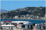 Apartment Dwellers view of Oriental Bay