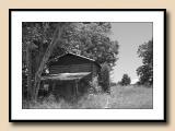 NC Past--Tobacco Barn Abandoned