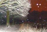 Snowworld in march