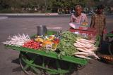 jaipur vendor cart cp