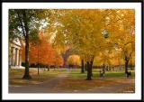 Harvard University and Cambridge