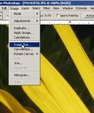 Resize in Photoshop 7 and  Elements 2