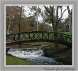 Brownhill Creek - Mitcham