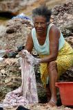 lavadeira no rio serrano