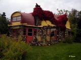 Colourful Concrete Cottage