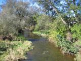 Towanda Creek - Canton