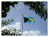 National Flag of the Bahamas