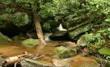 creek_wide.jpg