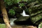 creek_zoom.jpg